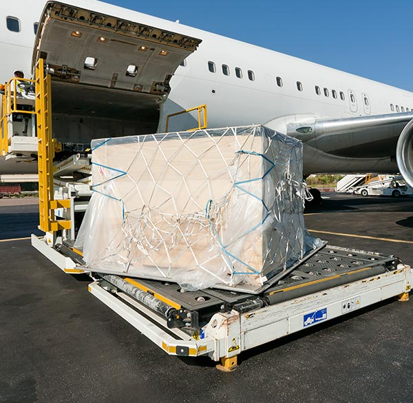 Air freight goods getting unloaded and transported by trucking company